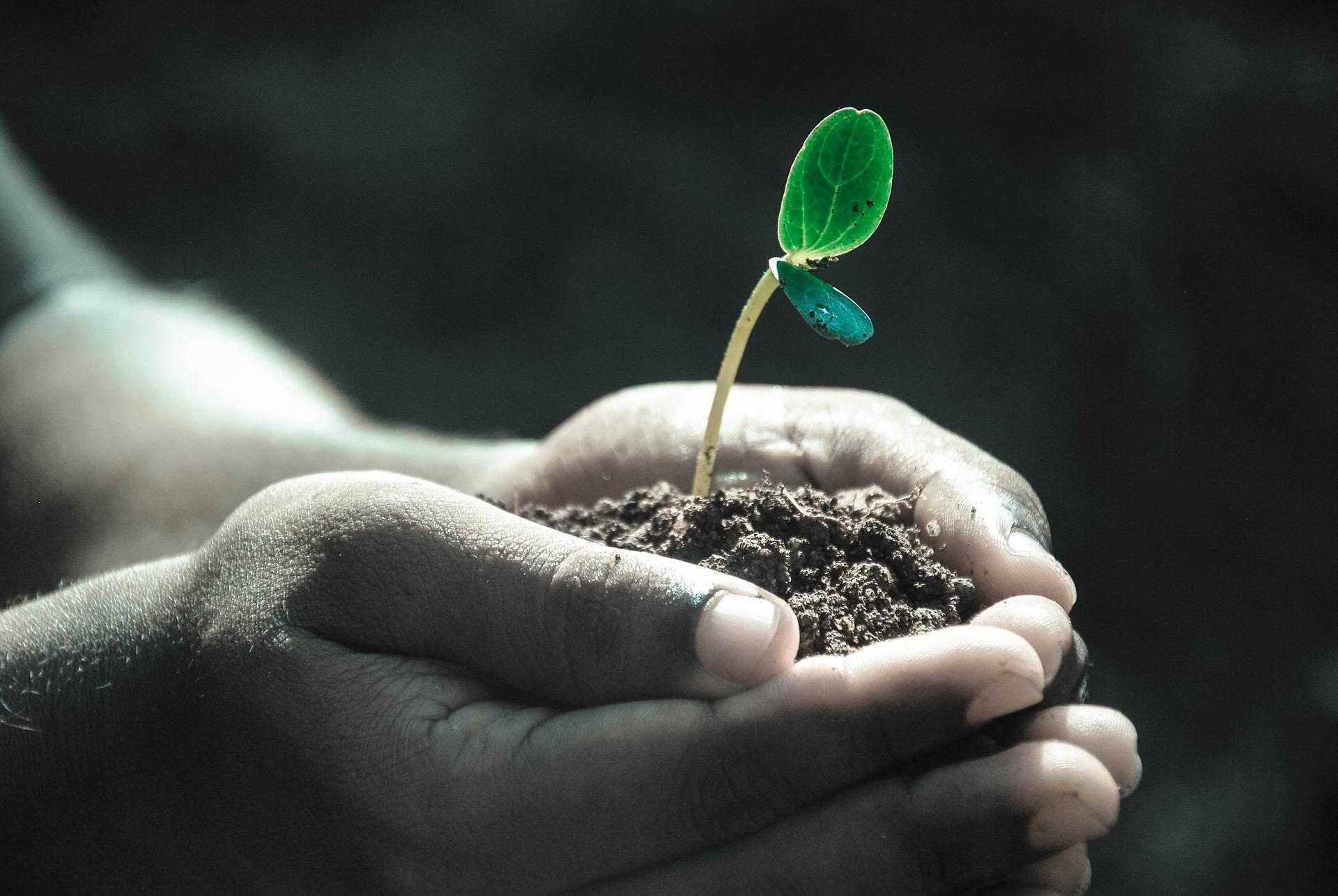 Course Image 1.1. Bio-, elintarvike- ja ympäristöala tutuksi (INBIP19)
