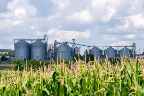 Course Image 1.1. Bio-, elintarvike- ja ympäristöala tutuksi INBIP21 syksy 2021